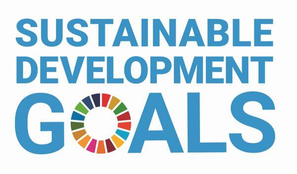 アドバンスト1で「SDGs」がテーマの競技に取り組む・その1